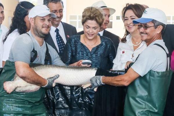 A presidente Dilma durante inauguração da sede da Embrapa Pesca e Aquicultura, em Palmas (TO) / Roberto Stuckert/PR