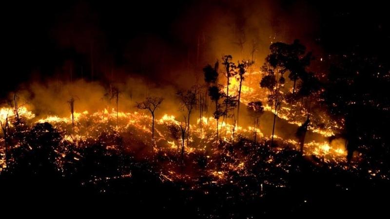 Resultado de imagem para Ibama suspeita que incêndios no Pantanal foram provocados por ação humana